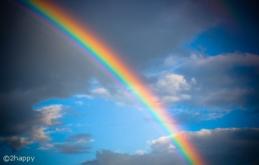 rainbow_web